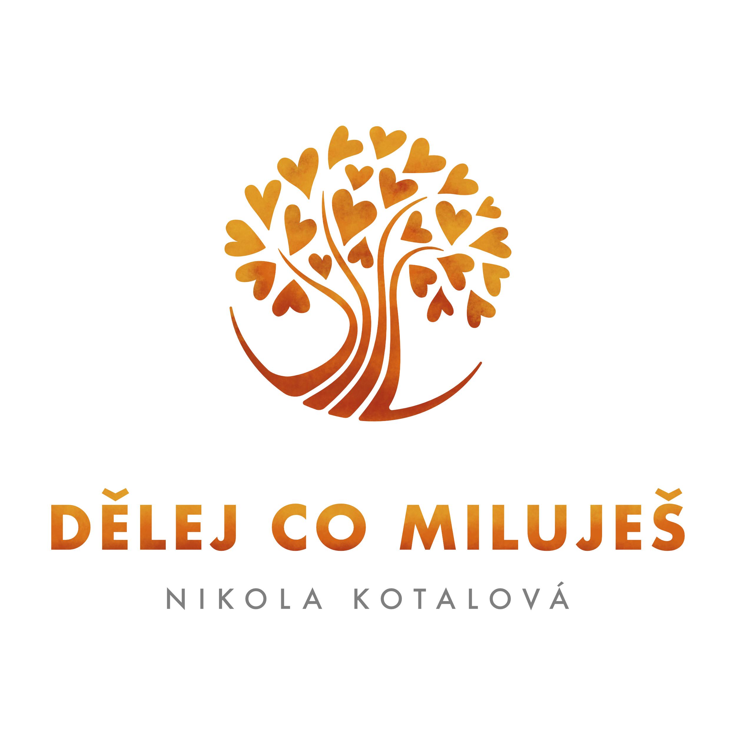 Nikola Kotalová - Dělej co miluješ